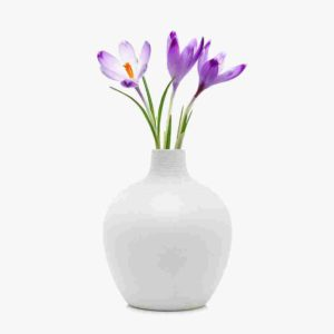 https://www.tamarind6.com/wp-content/uploads/2016/08/white-vase-300x300.jpg